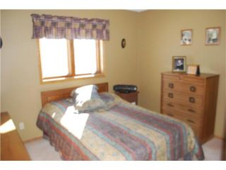 Photo 9: 443 Sarah Avenue in SOMERSET: Manitoba Other Residential for sale : MLS®# 1004270