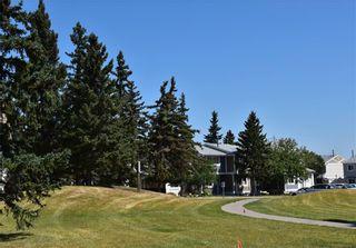 Photo 18: 816 MADEIRA Drive NE in Calgary: Marlborough Park Row/Townhouse for sale : MLS®# C4262604