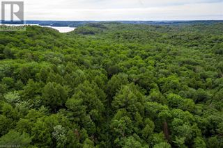 Photo 23: LOT#70 PINE Crescent in Huntsville: Vacant Land for sale : MLS®# 40109977