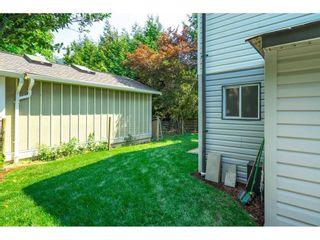 Photo 20: 4430 COMMUNITY Street: Yarrow House for sale : MLS®# R2601209