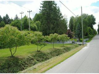 Photo 18: 30592 BURGESS Avenue in Abbotsford: Bradner House for sale : MLS®# F1405839