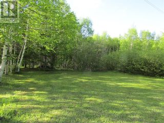 Photo 4: 25B TRANS CANADA Highway in PYNNS BROOK: Vacant Land for sale : MLS®# 1229378