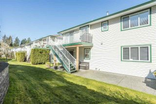 """Photo 39: 53 34250 HAZELWOOD Avenue in Abbotsford: Abbotsford East Townhouse for sale in """"Still Creek"""" : MLS®# R2567528"""