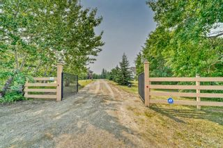 Photo 8: 264079 Township Road 252: Rural Wheatland County Detached for sale : MLS®# A1135145