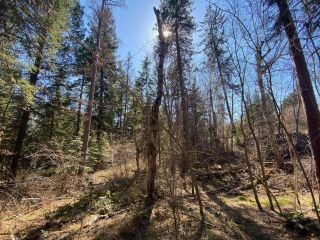 Photo 20: Lot L VIEW RIDGE ROAD in Nelson: Vacant Land for sale : MLS®# 2460797