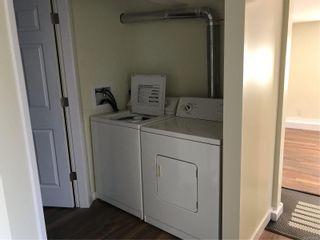 Photo 20: 3516 Calumet Ave in Saanich: SE Quadra House for sale (Saanich East)  : MLS®# 870944