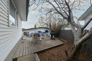 Photo 4: 91 Mardale Crescent NE in Calgary: Marlborough Detached for sale : MLS®# A1107782
