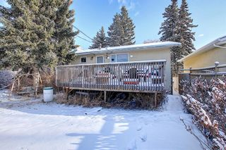 Photo 31: 67 Penmeadows Place SE in Calgary: Penbrooke Meadows Detached for sale : MLS®# A1066670