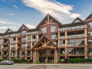 """Photo 27: 523 8288 207A Street in Langley: Willoughby Heights Condo for sale in """"Yorkson Creek Walnut Ridge 2"""" : MLS®# R2546058"""