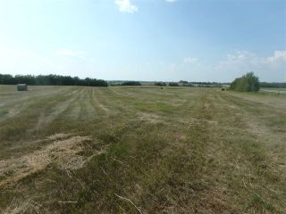 Photo 4: Hwy 21 and RR 224: Rural Leduc County Rural Land/Vacant Lot for sale : MLS®# E4212486