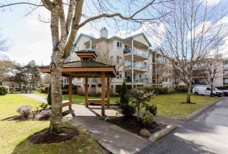 """Photo 20: 108 20433 53 Avenue in Langley: Langley City Condo for sale in """"COUNTRYSIDE ESTATES"""" : MLS®# R2141643"""