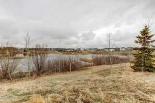 Photo 30: 53 EVANSDALE Landing NW in Calgary: Evanston Detached for sale : MLS®# A1104806