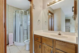 Photo 18: 87 Hawkford Crescent NW in Calgary: Hawkwood Detached for sale : MLS®# A1114162