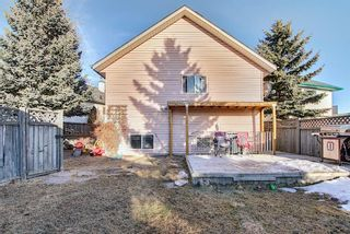 Photo 35: 52 Covington Court NE in Calgary: Coventry Hills Detached for sale : MLS®# A1078861
