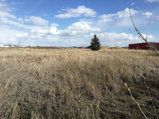 Photo 3: 5039 56 Street: Tofield Land Commercial for sale : MLS®# E4195609