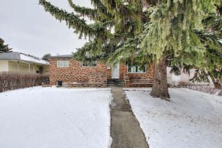 Photo 1: 2335 53 Avenue SW in Calgary: North Glenmore Park Detached for sale : MLS®# A1083978