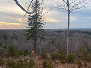 Photo 6: 380 McGraths Mountain Road in French River: 108-Rural Pictou County Residential for sale (Northern Region)  : MLS®# 202107934