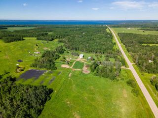 Photo 49: 275035 HWY 616: Rural Wetaskiwin County House for sale : MLS®# E4252163