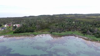 Photo 4: 618 Black Point Road in Ingomar: 407-Shelburne County Vacant Land for sale (South Shore)  : MLS®# 202114453