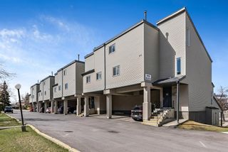 Photo 20: 1006 1540 29 Street NW in Calgary: St Andrews Heights Apartment for sale : MLS®# A1104191