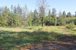 Photo 38: 3306 MACAULAY Rd in : CV Merville Black Creek House for sale (Comox Valley)  : MLS®# 851634