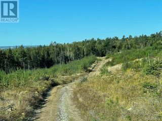Photo 16: - Saint David Ridge in St. Stephen: Vacant Land for sale : MLS®# NB063465