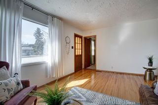 Photo 10: 7724 46 Avenue NW in Calgary: Bowness Detached for sale : MLS®# A1098212
