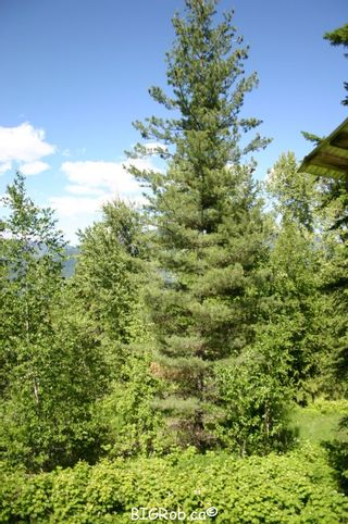 Photo 20: 4827 Goodwin Road in Eagle Bay: Vacant Land for sale : MLS®# 10116745