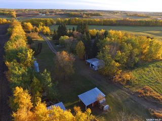 Photo 33: Hill Acreage in Spiritwood: Residential for sale (Spiritwood Rm No. 496)  : MLS®# SK823876