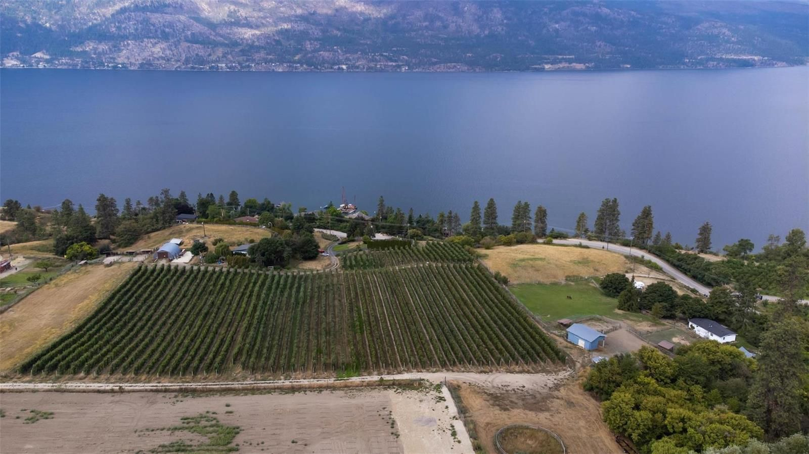 Main Photo: #12051 + 11951 Okanagan Centre Road, W in Lake Country: Agriculture for sale : MLS®# 10240005