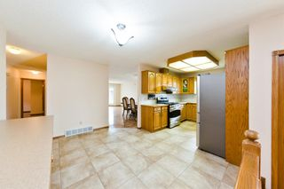 Photo 11: 45 Martinview Crescent NE in Calgary: Martindale Detached for sale : MLS®# A1112618