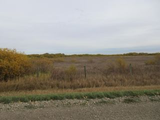 Photo 10: 55101 RR 270: Rural Sturgeon County Rural Land/Vacant Lot for sale : MLS®# E4265205