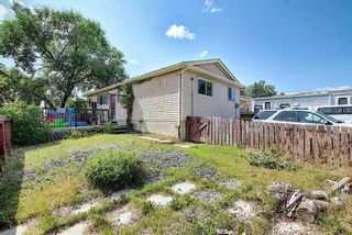 Photo 32: 51 Erin Park Close SE in Calgary: Erin Woods Detached for sale : MLS®# A1138830