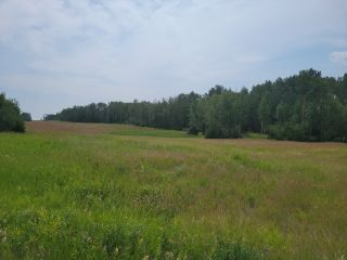 Photo 2: RR 222 TWP 504 LOT 1: Rural Leduc County Rural Land/Vacant Lot for sale : MLS®# E4254469