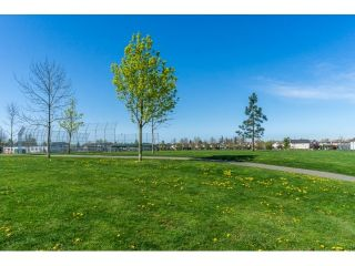 Photo 20: 68 18701 66 AVENUE in Surrey: Cloverdale BC Home for sale ()  : MLS®# R2054208