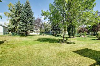 Photo 41: 165 Lakeside Greens Place: Chestermere Semi Detached for sale : MLS®# A1028449