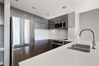 Photo 6: 303 1110 3 Avenue NW in Calgary: Hillhurst Apartment for sale : MLS®# A1124916