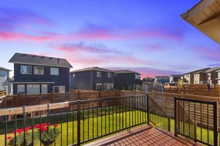 Photo 34: 162 Howse Rise NE in Calgary: Livingston Detached for sale : MLS®# A1153678