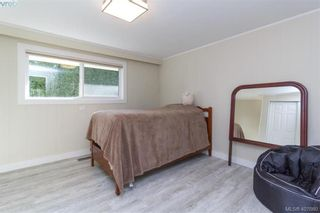 Photo 12: 4033 Cedar Hill Rd in VICTORIA: SE Mt Doug House for sale (Saanich East)  : MLS®# 810108
