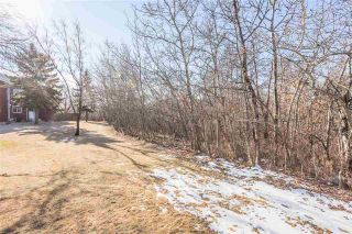 Photo 45: 13307 47 Street in Edmonton: Zone 35 Townhouse for sale : MLS®# E4238571