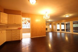 Photo 11:  in : Vancouver West Condo for rent : MLS®# AR061B
