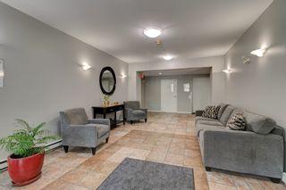 "Photo 4: 505 22233 RIVER Road in Maple Ridge: West Central Condo for sale in ""RIVER GARDENS"" : MLS®# R2619652"