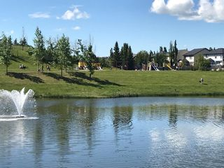 Photo 27: 1023 BRIGHTONCREST Green SE in Calgary: New Brighton Detached for sale : MLS®# A1014253
