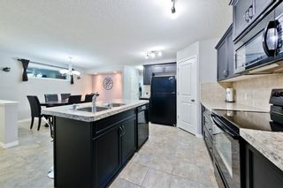 Photo 23: 169 SKYVIEW RANCH DR NE in Calgary: Skyview Ranch House for sale : MLS®# C4278111