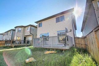 Photo 48: 8 Saddlecrest Gardens NE in Calgary: Saddle Ridge Detached for sale : MLS®# A1125888