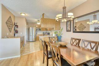 Photo 14: 124 Deer Ridge Close SE in Calgary: Deer Ridge Semi Detached for sale : MLS®# A1129488