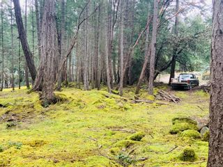Photo 8: Lot 36 Ling Cod Lane in : Isl Mudge Island Land for sale (Islands)  : MLS®# 869675