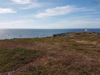 Photo 4: Coastline Acreage in Cape Auguet: 305-Richmond County / St. Peters & Area Vacant Land for sale (Highland Region)  : MLS®# 202124001