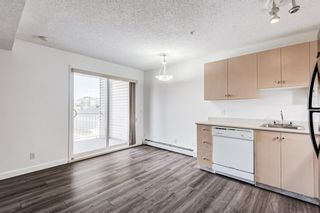 Photo 4: 3209 1620 70 Street SE in Calgary: Applewood Park Apartment for sale : MLS®# A1116068