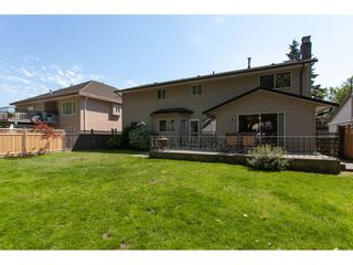 Photo 19: 8861 156A Street in Surrey: Fleetwood Tynehead House for sale : MLS®# R2281501